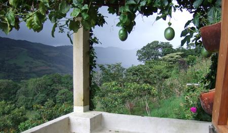 Passionsfrugter og udsigt fra terrassen Finca Seguir Soñando